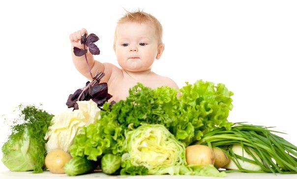 makanan pejal, makanan pejal pertama, makan makanan pejal pertama bayi makanan pejal pertama bayi, bayi, makan makan, apa yang boleh apa yang boleh, apa yang tidak boleh, makanan bayi, makanan bayi 6 bulan, nestum bayi 6 bulan, bayi 6 bulan