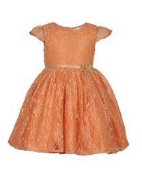 Bambiola Gold Threaded Net Baby Girl Dress-babycouture.in