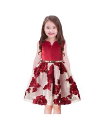 Lovely Maroon Florida Net Kids Party Dress-babycouture.in
