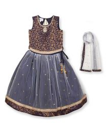 Saka Brocade Style Designer Lehnga Choli Set-babycouture.in