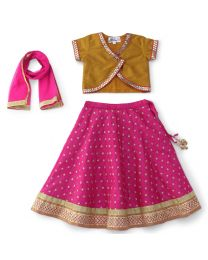 Saka Magenta Embroidered Lehnga with Angrakha Choli Set-babycouture.in
